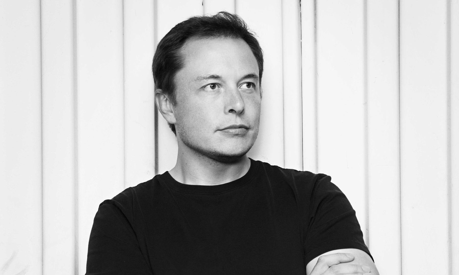 Feedback Loop By Elon Musk